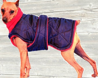 Winter Dog Coat, Custom made with quilted and insulated nylon, tummy panel and fleece turtleneck/snood