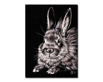 """BUNNY 144 Easter rabbit hare lapin scratchboard painting Sandrine Curtiss ORIGINAL art ACEO 2.5""""x3.5"""""""
