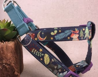 Wild Tribe Boho Wilderness Camping Teepee Adventure Gender Neutral Mountain Hiking Harnesses