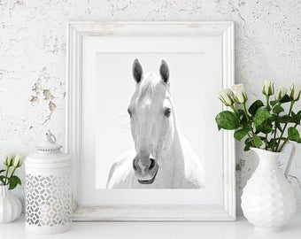 White Horse Photograph in Black and White | White Background Animal Art | Vertical Wall Art