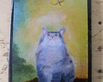 Kitten and moth