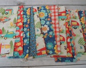 SALE, Fabric Grab Bag, All New Let's go Camping Fabrics, 20 pieces, Bag 76C