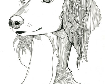 Dog portrait line drawing