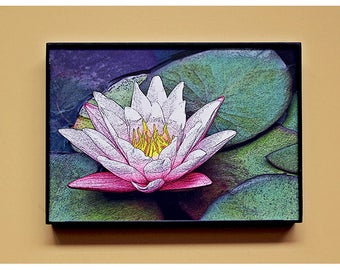 """5x7"""" - Fine Art Photography FRAMED print. Pink Lotus water lily - digital drawing. Elegant black frame. Home office decor, photo canvas"""