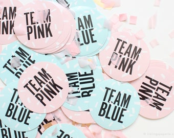 Set of 24 Gender Reveal Party Stickers //  Team Pink + Team Blue Stickers // Baby Gender announcement, reveal party, boy or girl, he or she