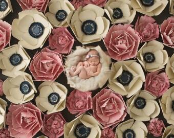 "Digital Backdrop- ""Flower Explosion-""- Newborn Flower Background"