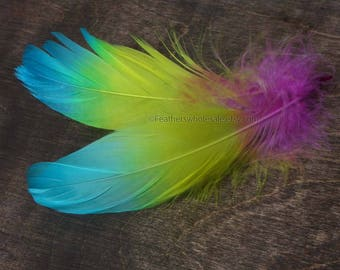 Rainbow Craft Feathers Goose Shoulders Dyed Pink Orange Yellow Green Blue 2 Real Feathers