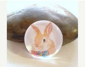 Moving 50off Sale - 25mm /20mm/12mm Rabbit Handmade Glass Photo Cabochons PC255-25