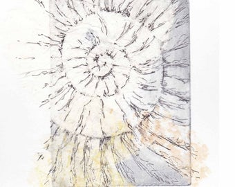 Ammonite fossil etching with chine collé no.65  jurassic Dorset coast fossil spiral fossil ammonites golden section