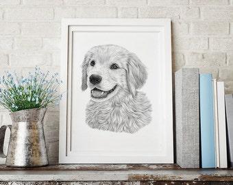 Golden Retriever drawing, Dog print, Retriever print, Drwing print, Pet portrait, Pet print