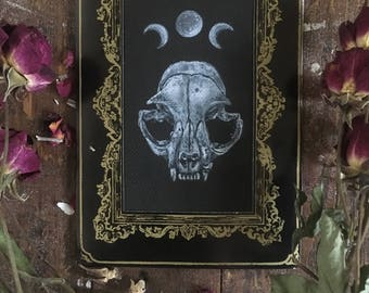 Cat Skull Cabinet Card - Original Acrylic Painting on Paper of Oddity Bones~ Gothic Occult Victorian