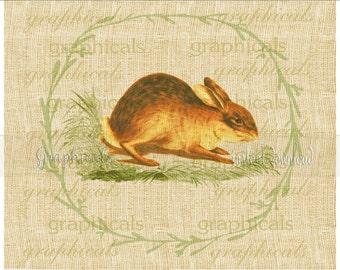 Happy Easter bunny rabbit Instant clip art digital download image for iron on fabric transfer to burlap decoupage pillow tote bag No 2334