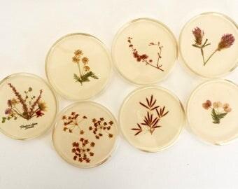 Flowers of Israel- Pressed Flower Coaster