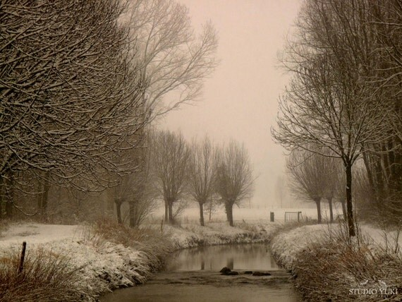 White Winter Photograph, Snow, River, Trees, Winter Wedding Gift, Rustic Home Decor,  Landscape Wall Art, 8x10, Woodland, Zen - White World