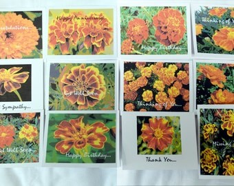Painted Golden Summer Marigolds - Notecards