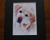 Custom Sold Dog Art print