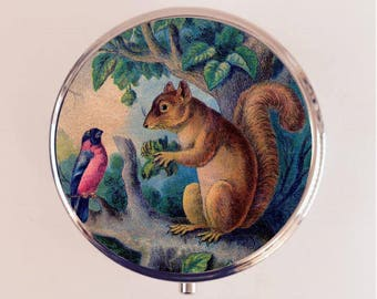 Squirrel Pill Box Case Pillbox Holder Trinket Box Animal Art Woodland Creatures