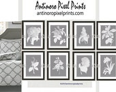Art Prints Grey White Botanical Flower Damask Modern Wall Prints - Set of (8) 8x10 (Unframed) #475074634