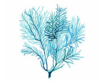 Turquoise blue Sea Fan print, Watercolor Coral Illustration - Beach home decor, Archival giclee print on fine art paper