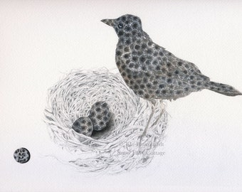 Petoskey Stone Robin (with Nest and Eggs) - Petoskey Stone Art Print, matted, 5 x 7 inches