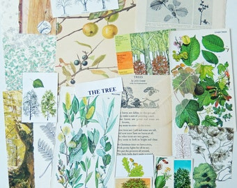 TREES Collage Pack, Vintage Botanical Paper Ephemera Craft Pack / Paper Supplies / Collage Supply
