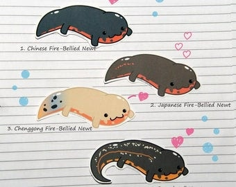 Fire-Bellied Newt Stickers and Magnets