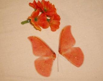 Peach  Mini Wings