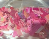 Ephemera 100+ Peice Paper/Embellishment Pack Found Paper Junk Journal Mixed Media Kit in PINK