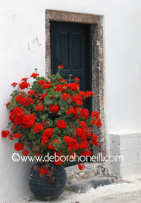"Greece Photography red flowers ancient old door Santorini travel photo wall art ""Greece, Red Flowers at Door"""