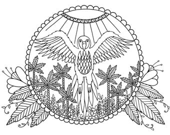 Parrot Digital Download Coloring Page