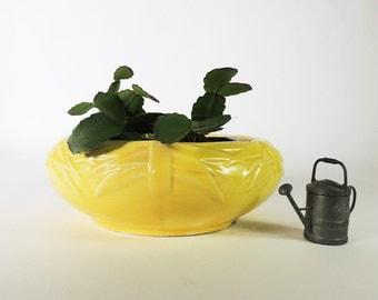 McCoy Bulb Bowl Vintage 1940's Planter Dish Garden or Succulent Planter