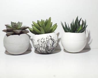 Round Planter/ Concrete planter /Small Planters/ Air plant Holder / Succulent Planters/  Home decor / Concrete planters / Cactus Planters