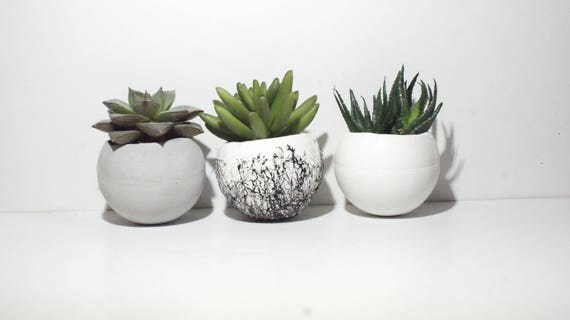Beton übertopf runde übertopf beton übertopf small pflanzer luft pflanze