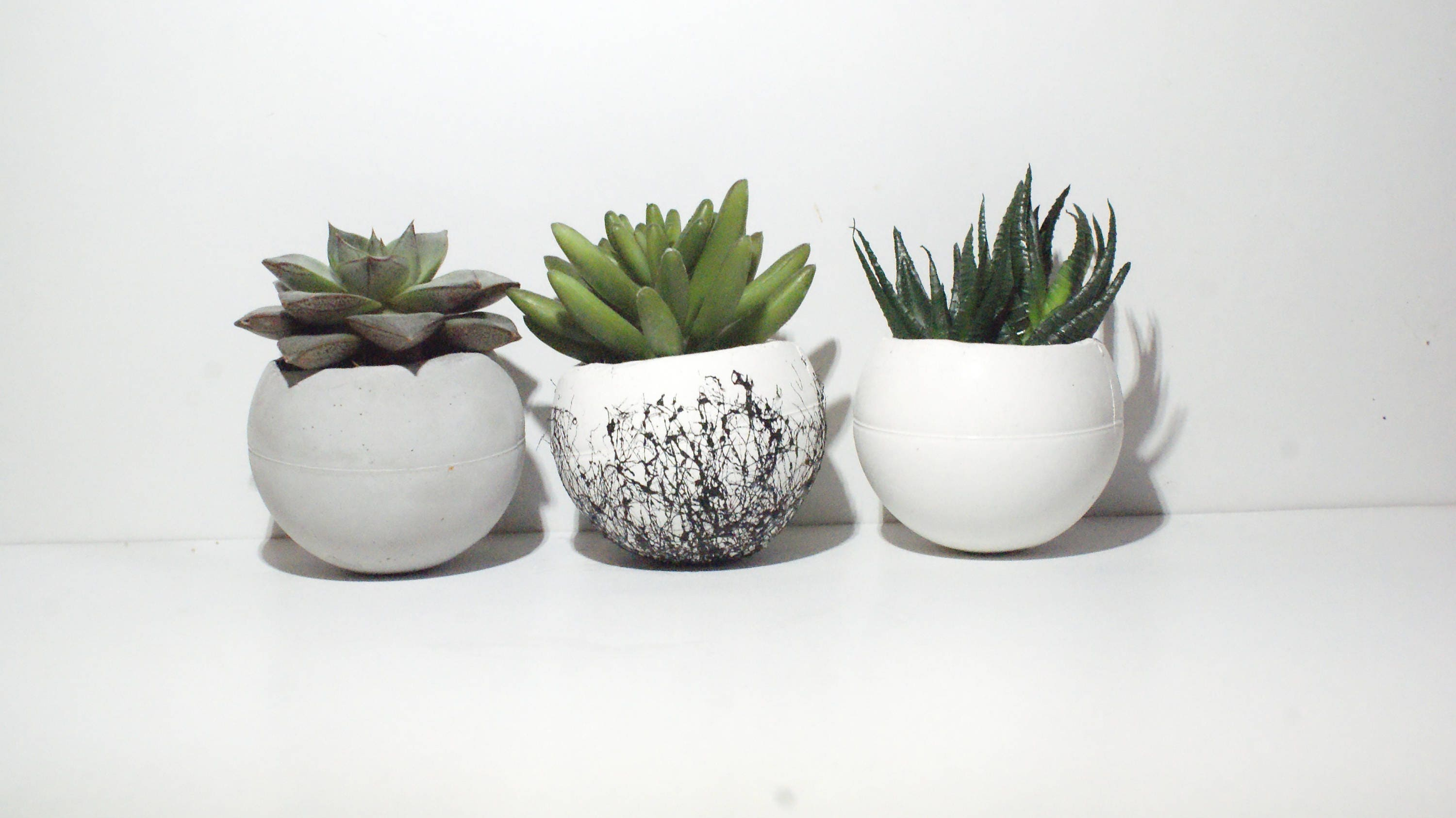Round Planter/ Concrete planter /Small Planters/ Air plant