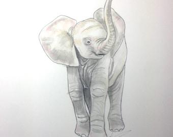 Baby Elephant Illustration - Children's Room or Nursery Artwork
