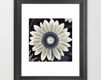 Beautiful Flower,Printable Photography,Home Decoration,Instant Download,Modern Minimal