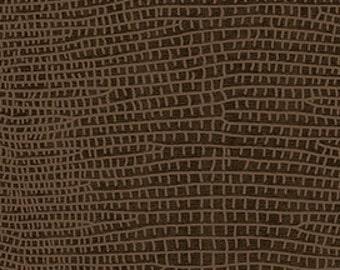 Imagine - Brown by Kona Bay Cotton Fabric Yardage