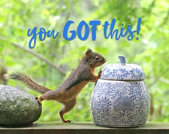 Motivational Art, Inspirational Prints, You Got This, Inspirational Art, Motivational Print, Squirrel Print, Squirrel Gifts, Funny Art