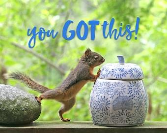 Motivational Art, Inspirational Prints, You Got This, Inspirational Art, Motivational Print, Squirrel Print, Squirrel Gifts, Funny Art
