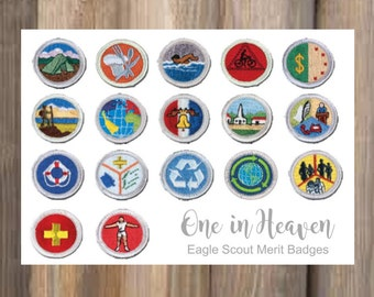 Eagle Scout Merit Badges