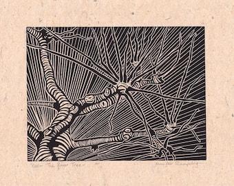 Tree Lino Print - The River Tree by Jennifer Rampling
