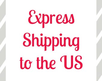 Express Shipping to the US - Express Delivery to America