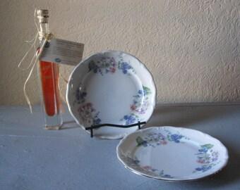 Walbrzych Salad Plates 2