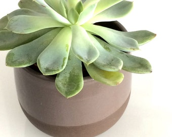 Planter cache pot dark clay with grey glaze