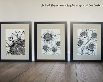 Set of 3 Fibonacci Sunflower prints. Unusual mathematical spiral black and white ink drawing. Unique modern wall art matching home decor.