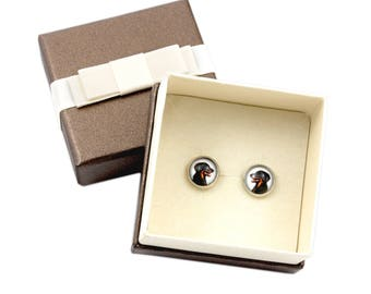 Beauceron. Pet in your ear. Earrings with box. Photojewelry. Handmade.