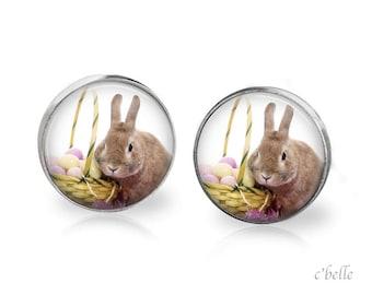 Ear Easter Bunny of bunnies 11