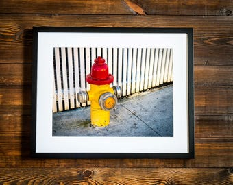 Wall art photo print vibrant hydrant