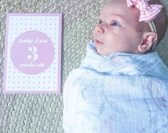 SALE // Milestone Baby Cards, Set of 22, Pink, Girls Milestone Cards