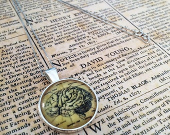 Vintage anatomy brain pendant necklace